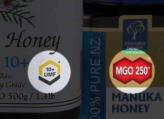 Types of manuka honey labels - UMF, MGO